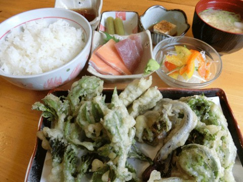 山菜天ぷら定食♪