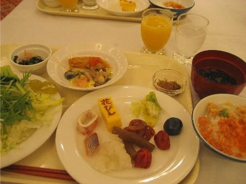 道南旅行(リベンジ編)3 花びしホテル