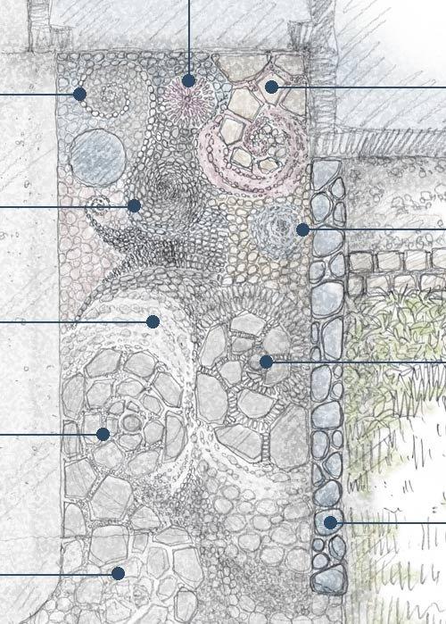 庭のデザイン・イメージ図