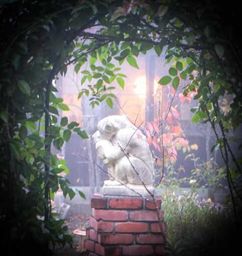 庭園記 2018.10.18