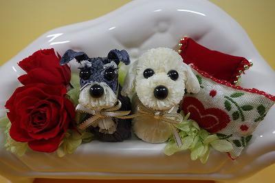 happy flower dog 販売のお知らせ~*