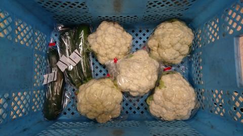 野菜売り場の情報