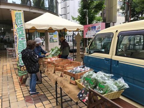 今年も藤丸デパート前で野菜とハーブの直売やっています