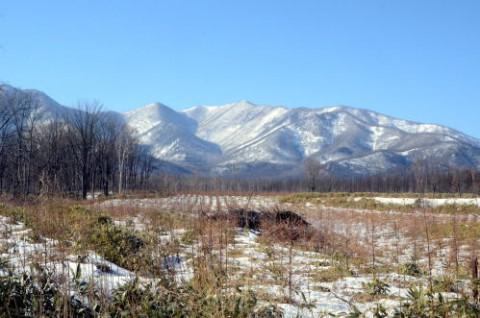 降雪量は過去最少 (-_-)