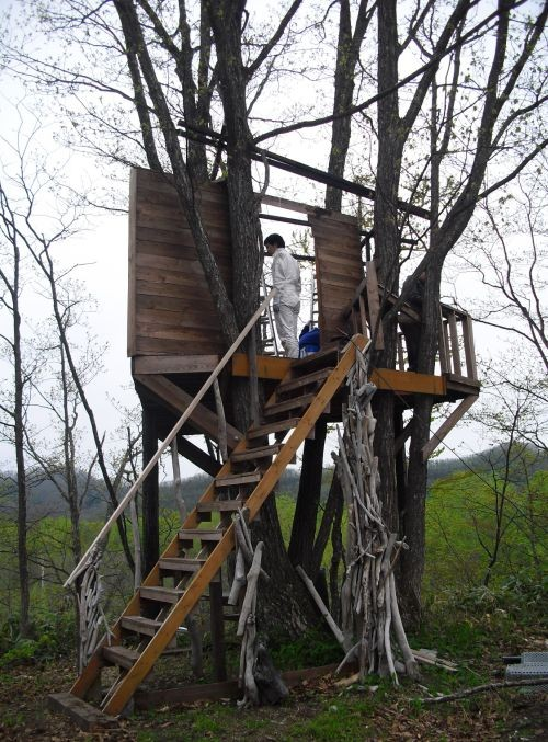 今年初のツリーハウス製作