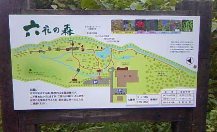 六花の森・・・(*'-'*)v