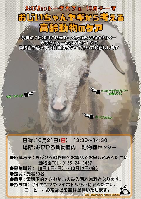 10月のトークカフェのお知らせ!