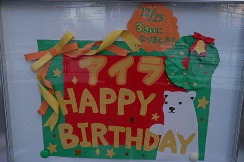 2013年、アイラのお誕生日イベント