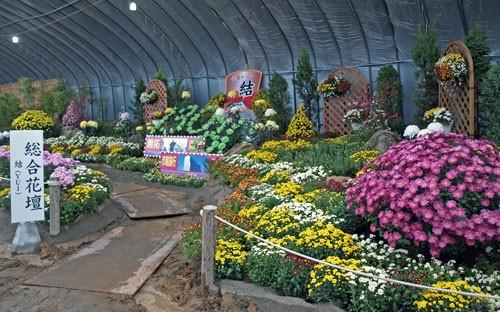 第43回 帯広菊祭り
