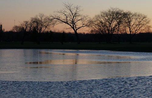 池の水も凍った今朝の寒さ、ナナカマドの赤でホッコリ