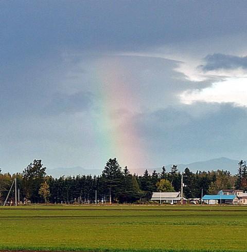 大きくてダブルの虹