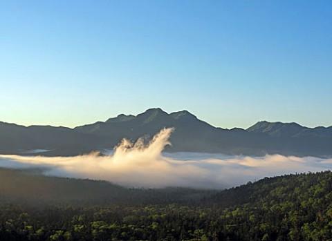 立ち上がる三国峠の雲海