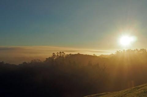 帯広の森展望台からの雲海