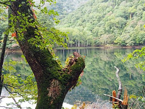 日高でただ一つの自然湖は豊似湖
