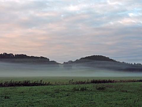 虫類の朝霧風景と今朝は十勝が丘の雲海