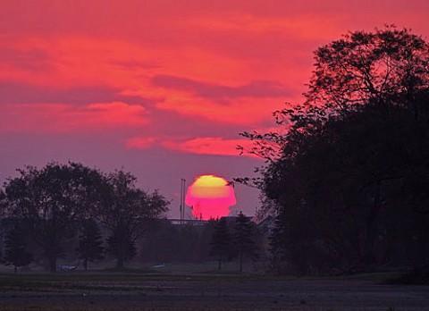 変形のピンクの太陽