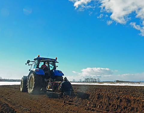 お天気に恵まれ順調だった収穫作業