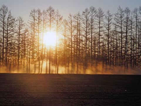 朝霧に見えるのは農作業