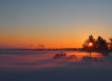 朝陽に染まる雪原と毛嵐