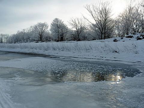 写したい被写体があったから歩けた雪深い川原