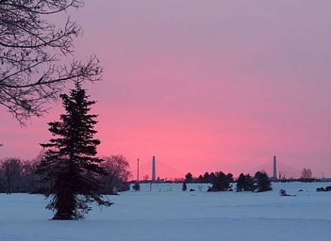 今朝の日の出はピンクの朝陽