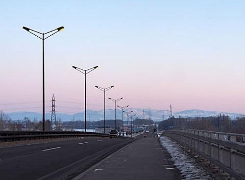平原大橋から見えた光景と野鳥