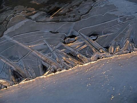 昨日の雪は消えて残り僅かの氷