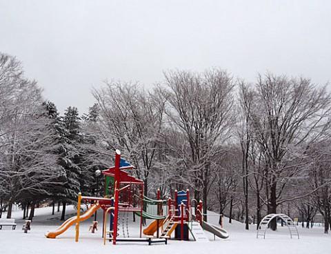 雪景色と畑の地霧