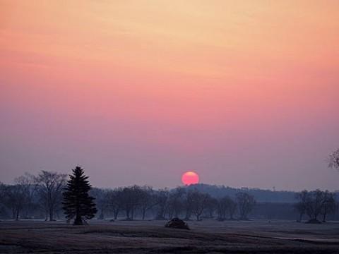 予報20度の朝にピンクの朝陽