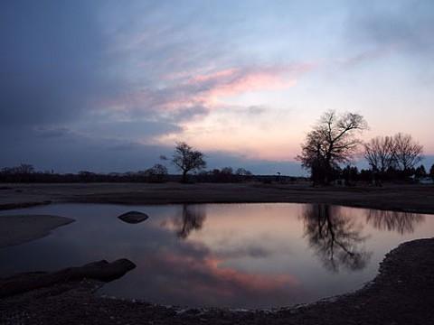 凍っていた池