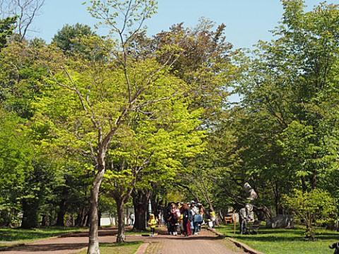遠足日和、新緑の緑ヶ丘公園
