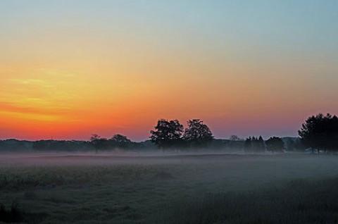 元のゴルフ場で写せた朝霧風景