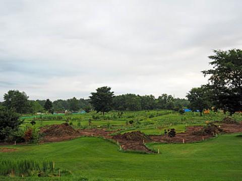 再生中のパークゴルフ場