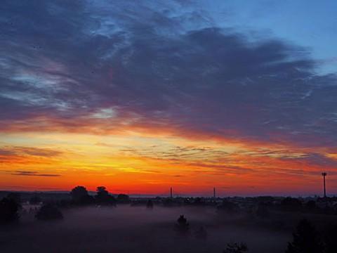 朝霧発生が多くなった河川敷