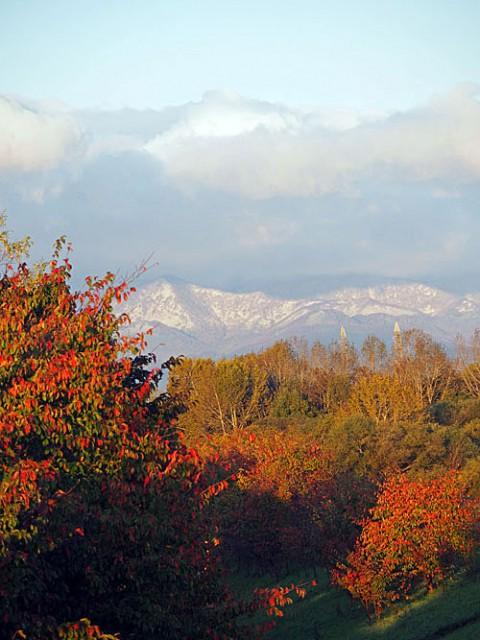 山は白く紅葉進む