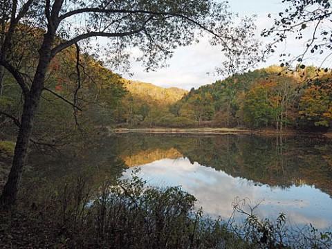 池の映り込みと終わりかけの紅葉