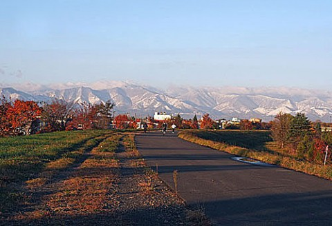 今朝の山は真っ白でした