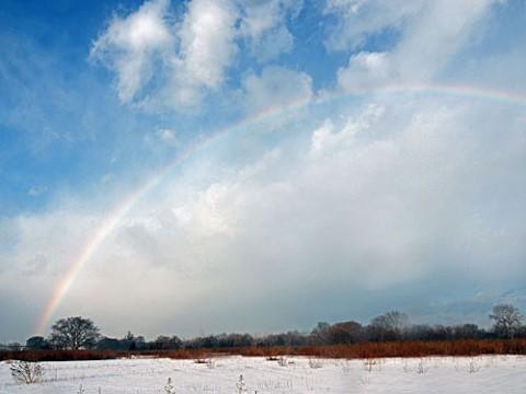 今朝は大きな虹が2度