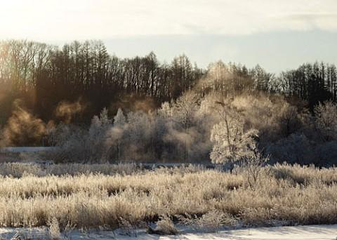 霧氷風景の堤防を散歩