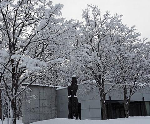 緑ヶ丘公園の雪景色