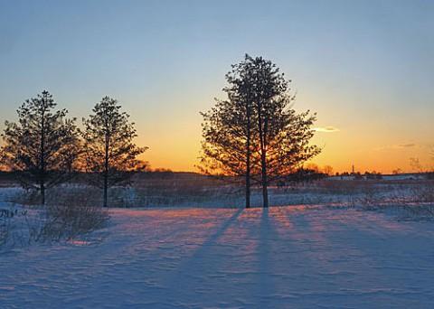 スノーシューで雪原を歩く
