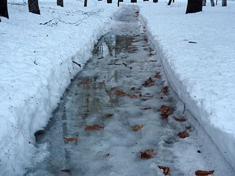 水溜まりも凍らない朝