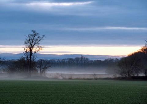 早朝の畑は幕別で・・