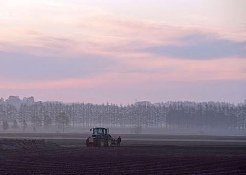 早くから農作業エンレイソウ満開の緑地