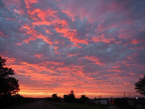 空全体が染まった朝