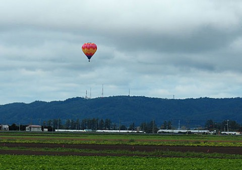 熱気球と玉ねぎコンテナ