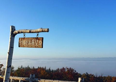 十勝が丘から雲海と白鳥撮影