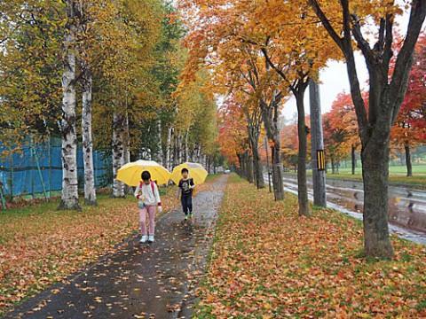 雨の日の登校