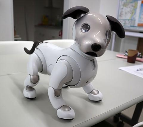 犬型ロボット(アイボ)