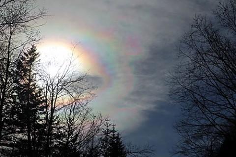 色鮮やかな彩雲